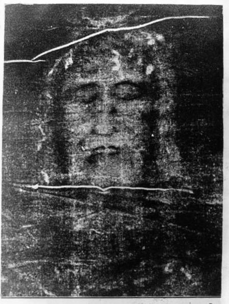 Shroud negative Gallica