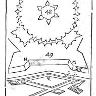 Plate 11