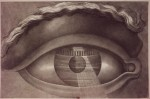 ledoux-eye